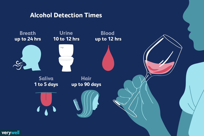 Продолжительность пребывания алкоголя в вашей системе зависит от личности