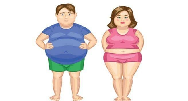 How fat affects men and women differently